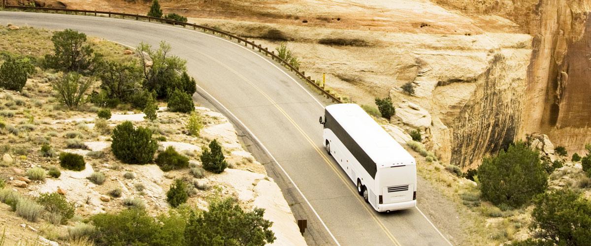 D'Agostino Tour - Servizio di noleggio pullman Gran Turismo